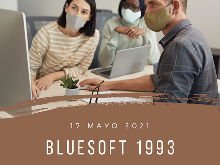 blueSoft 1993
