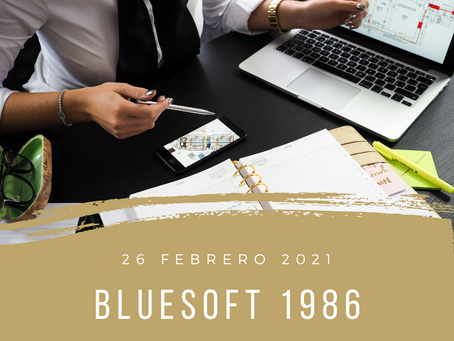 blueSoft 1986