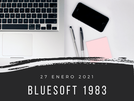 blueSoft 1983
