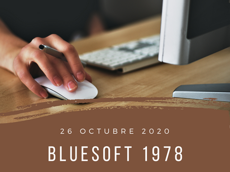 blueSoft 1978