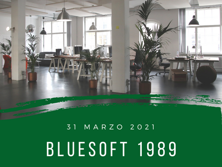 blueSoft 1989