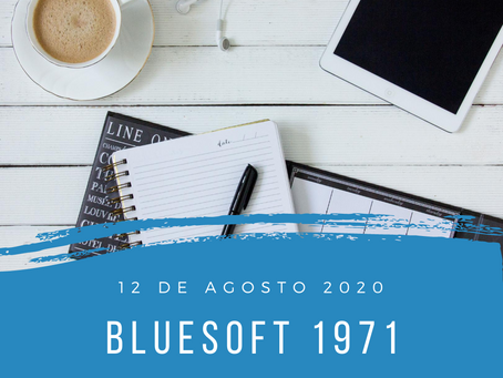 blueSoft 1971