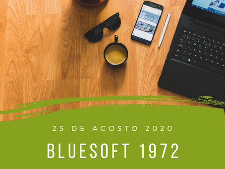 blueSoft 1972