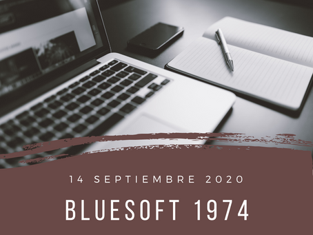 blueSoft 1974