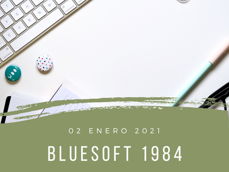 blueSoft 1984