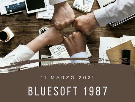 blueSoft 1987