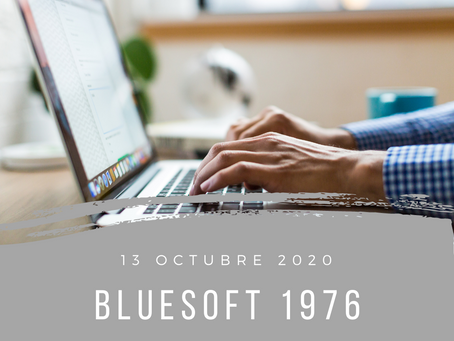 blueSoft 1976