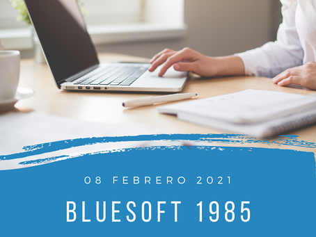 blueSoft 1985