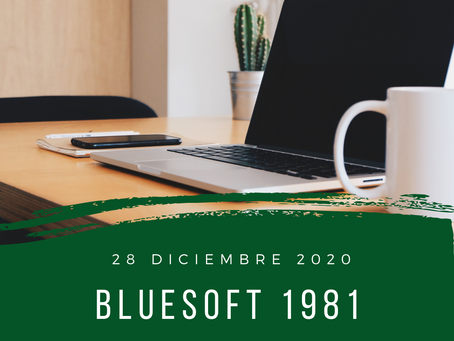 blueSoft 1981