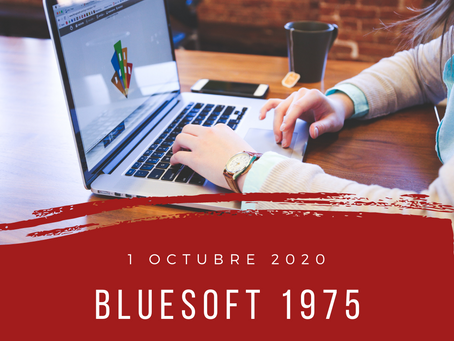 blueSoft 1975