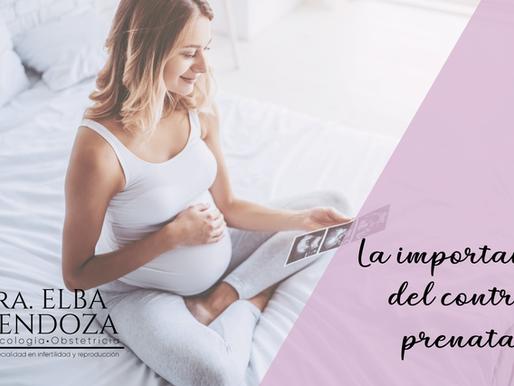 La importancia del control prenatal