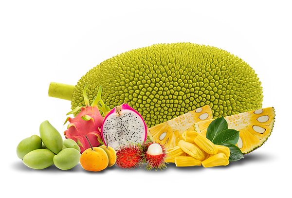 Exotic Fruits.png