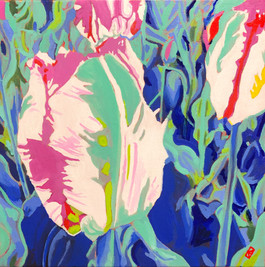 Parrot Tulips - SOLD