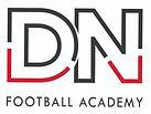 DN_Academy_logo_2_edited.jpg
