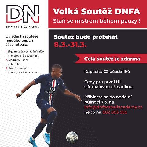 DNFA_Soutey_web-01.jpg