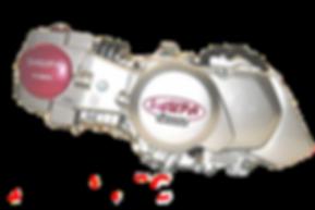 RSC 2V - ořez