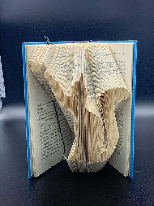 Folded Cat Book