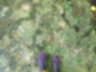 IMG_7189_edited.jpg