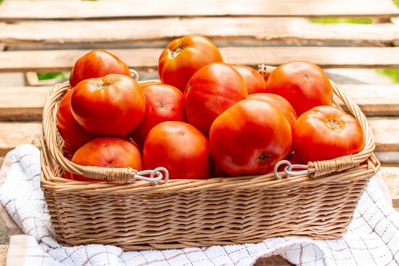 Farmers Alliance_Tomatoes in Basket 3.jp