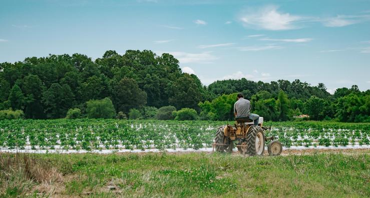 Farmers Alliance_Farmer on Tractor 5.jpg