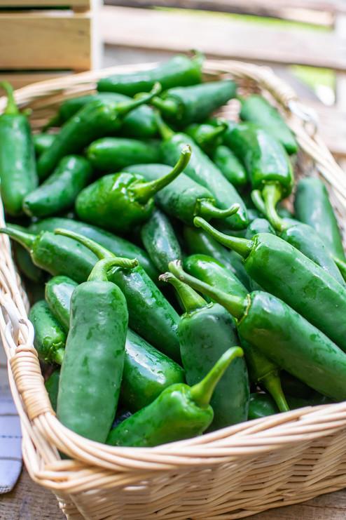 Farmers Alliance_Hot Peppers in Basket.j