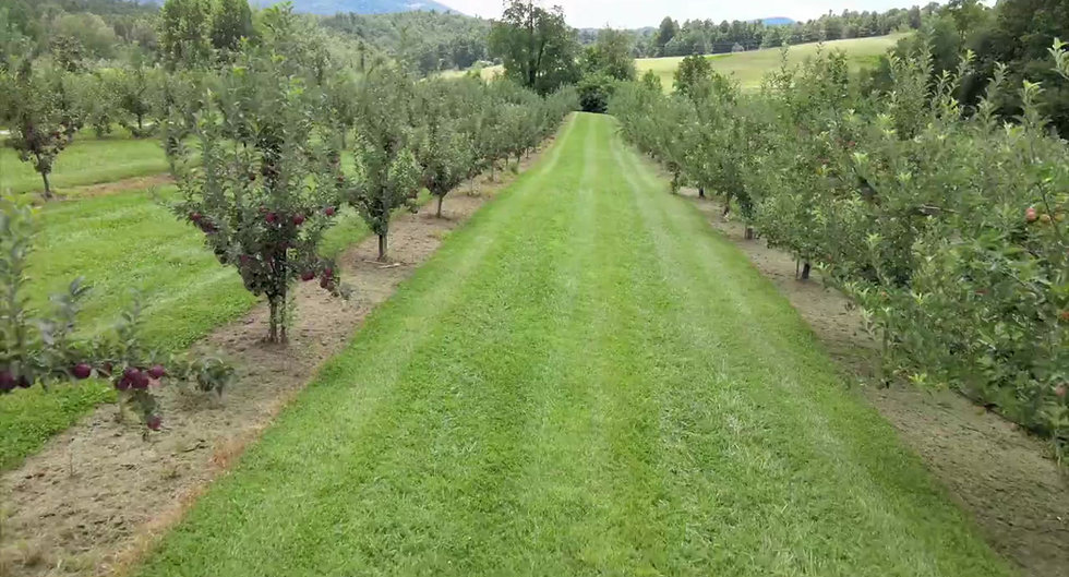 Learn about Jeter Mountain Farm Boxes