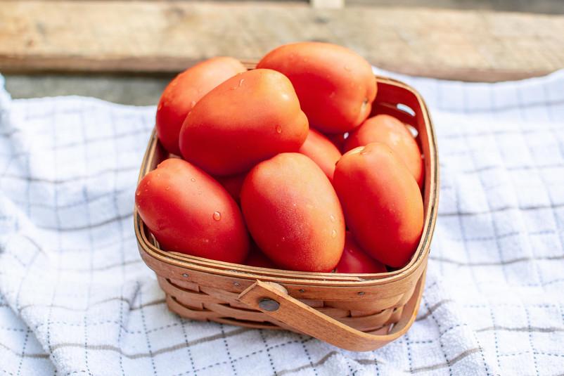 Farmers Alliance_Tomatoes in Basket 1.jp