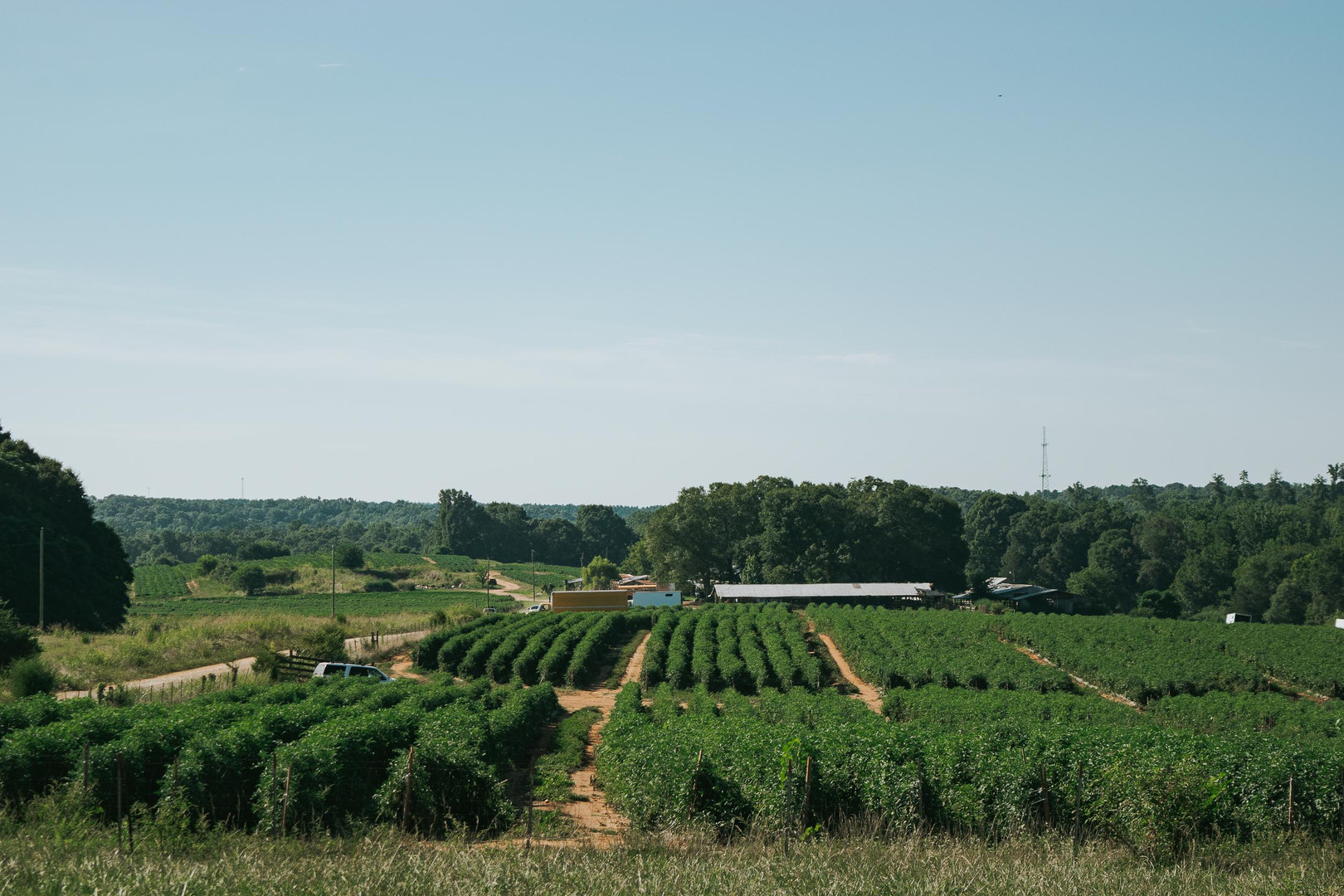 Farmers Alliance_Farm Landscape 4.jpg