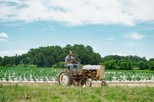Farmers Alliance_Farmer on Tractor 3.jpg