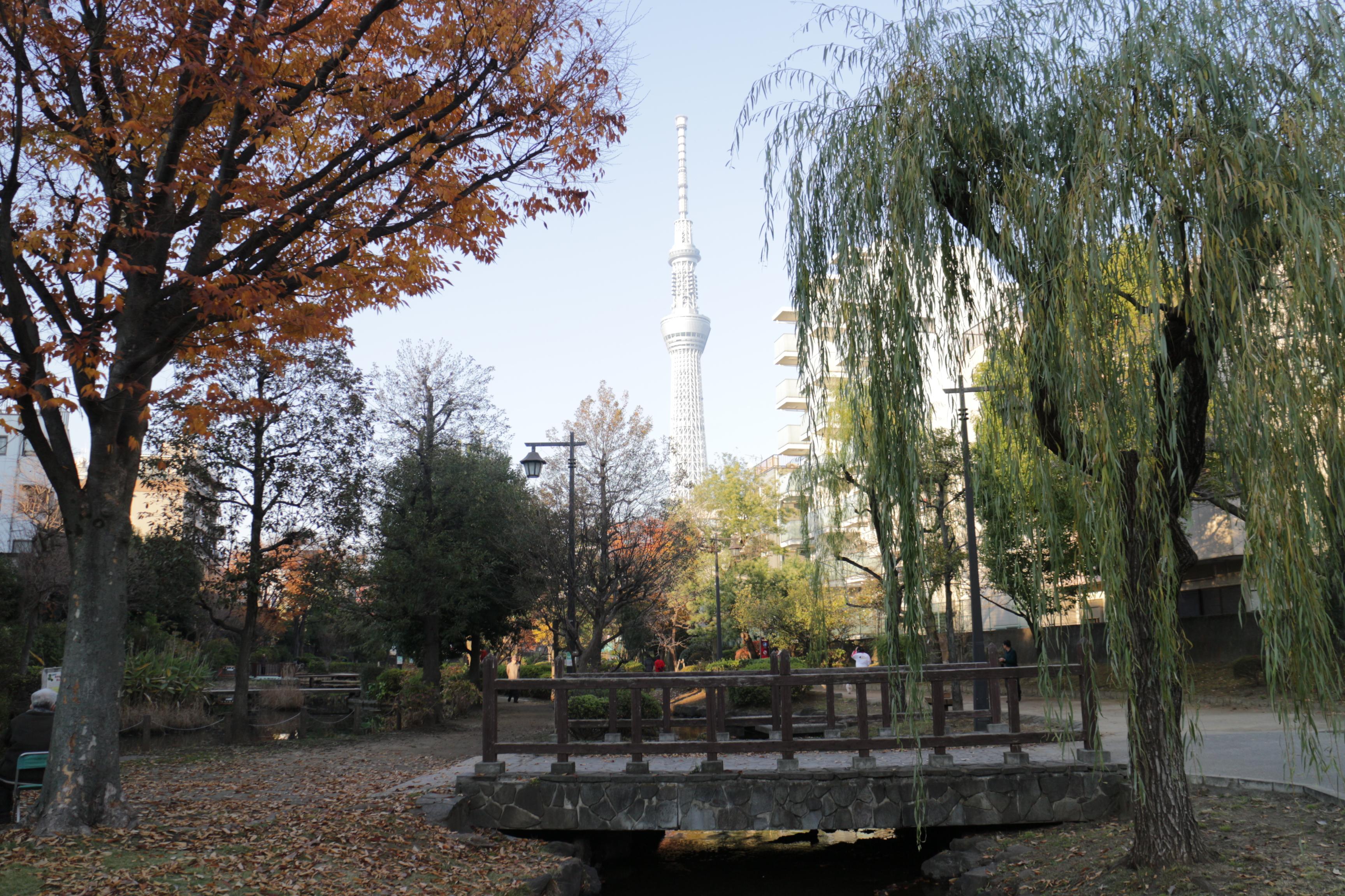 錦糸町302 (2)
