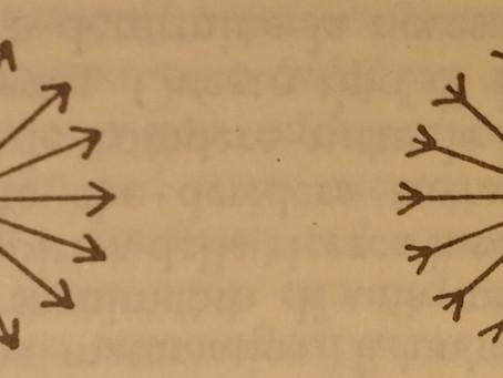 Attitudine n.2: dalla periferia al Centro e ritorno (2 di 2)