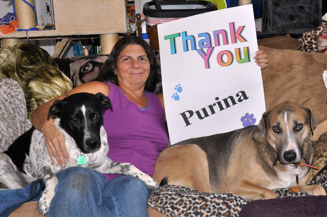 Non-Profit | For The Luv of Paws | United States