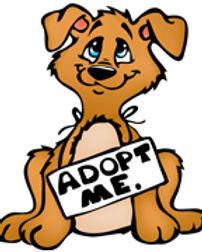 Adopt Me.jpg