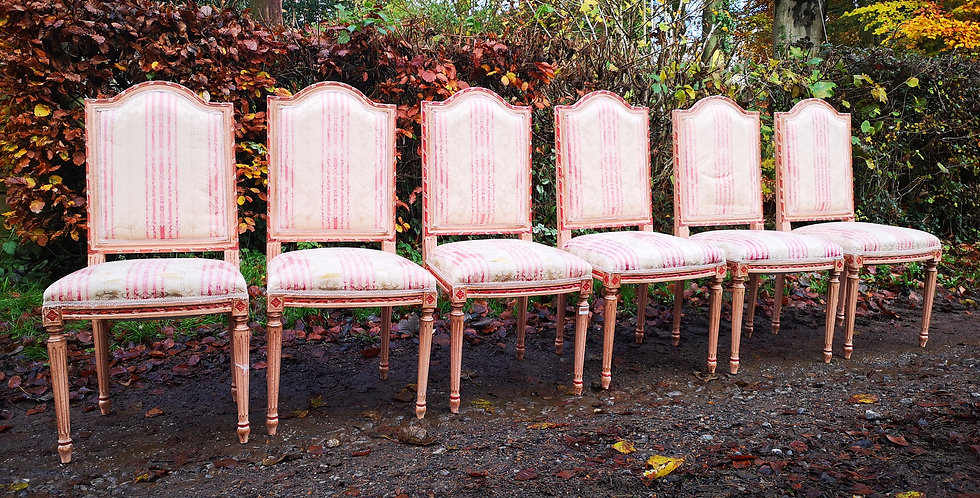 LouisXVI Style Dining Chairs