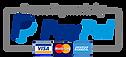 paypal-logo-small-300x136V2.png