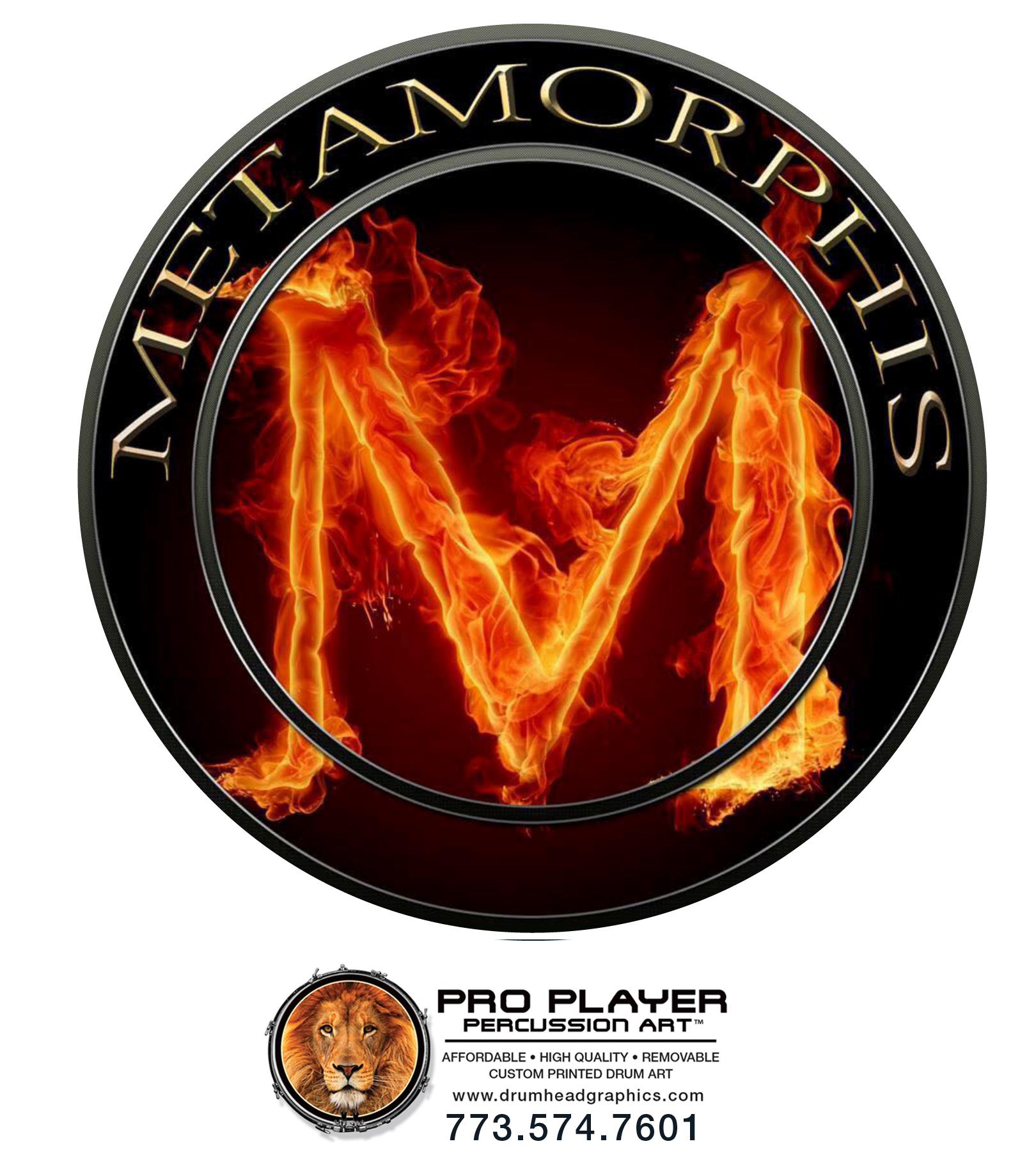 Metamorphis_22inch