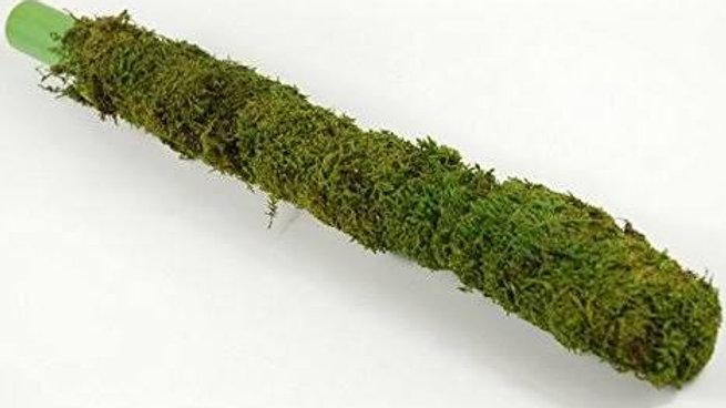 Moss Stick1pc