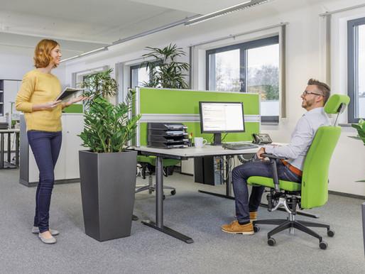 Webinar: Optimale Gestaltung des Arbeitsplatzes