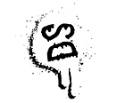 DS ICON.png