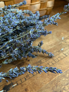 Small Dried Lavender Bunch