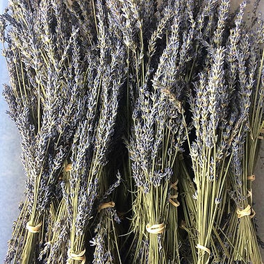 For sale!! Dried lavender bunches $8.00