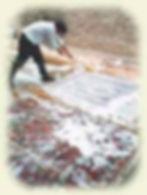 CleanRugs.jpg