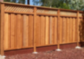 Fence-5_edited.jpg