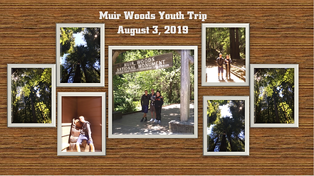 Muir Woods Youth Trip collage  8.3.19.PN
