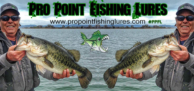 "Pro Point Fishing Lures ""The Bug"" in Action"