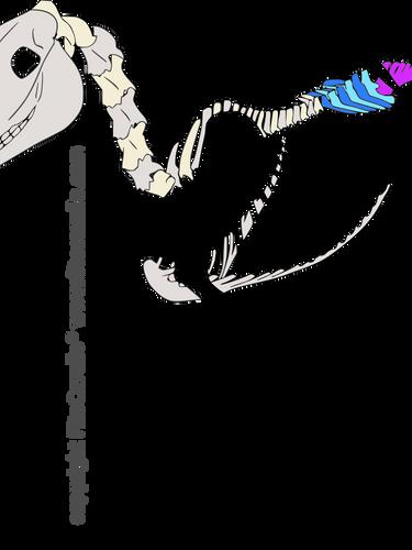 csontváz ágyék keresztcsont-1.png