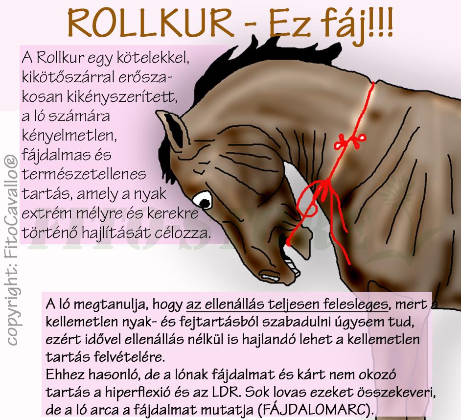 fáj a farok ízületei)