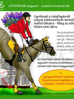 ÍNSÉRÜLÉS 2