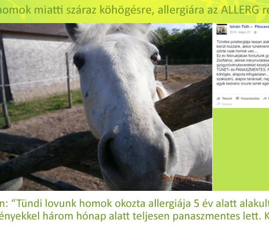 Tóth István, Tündike