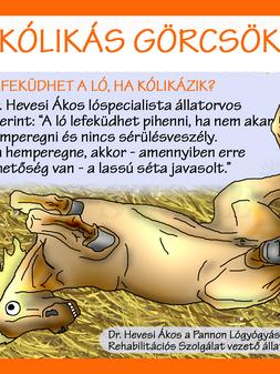 KÓLIKÁS GÖRCSÖK
